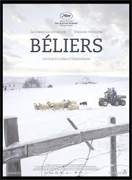 Béliers 1